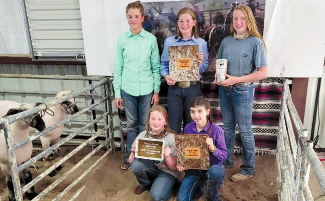 Pecos County 4H and FFA members went to the Livestock Jackpot in Fort Davis and had a successful showing at the competition. The following earned awards at the event: Megan Hanson, junior showmanship winner in cattle; Madison Hanson, first place Heifer and reserved overall champion; Carla Vazquez, reserved champion WOPB and BLOPB junior swine showmanship champion; Rylee McDaniel, reserve champion Duroc pig and senior swine showmanship champion; Mesa McDaniel, reserve champion Hampshire plus several top show
